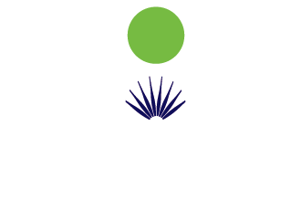 The Blue Dawn logo